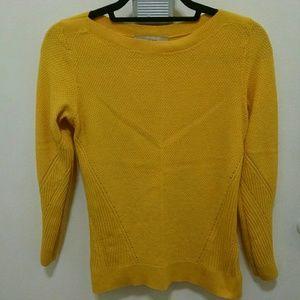 Beautiful Yellow gold boatneck sweater